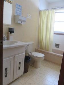 8 Major R.J. Black's main floor - washroom