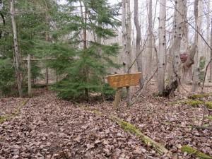 Story Tree Entrance